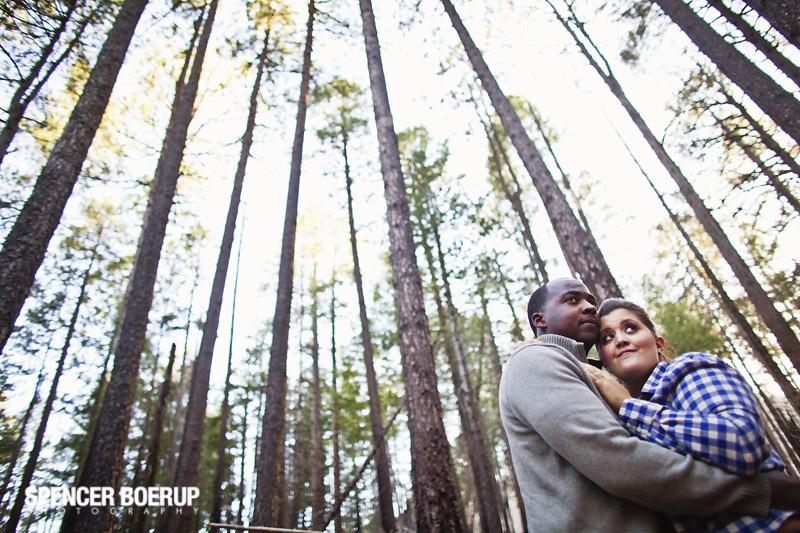 tucson engagement portrait mt lemmon forest arizona wedding